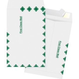 DuPont Tyvek 1st Class Catalog Envelopes
