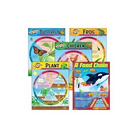 Trend Life Cycles Learning Charts Combo Pack